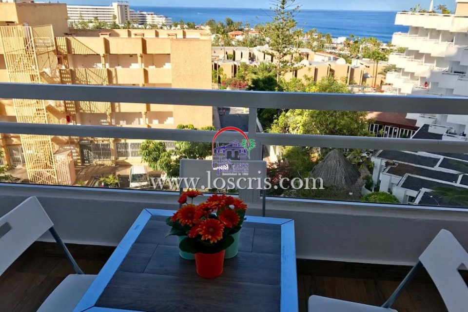 1 Bed APARTMENT, PONDEROSA, PLAYA DE LAS AMERICAS